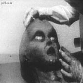 تصاویری عجیب از آدم فضایی - picbox.ir